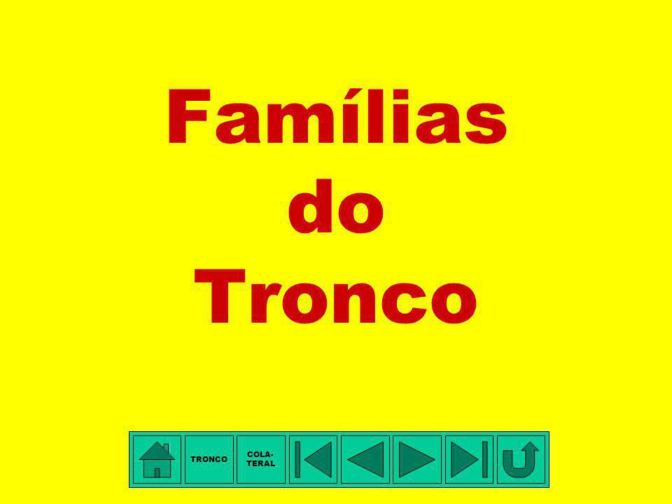 Famílias do Tronco TRONCO COLA- TERAL