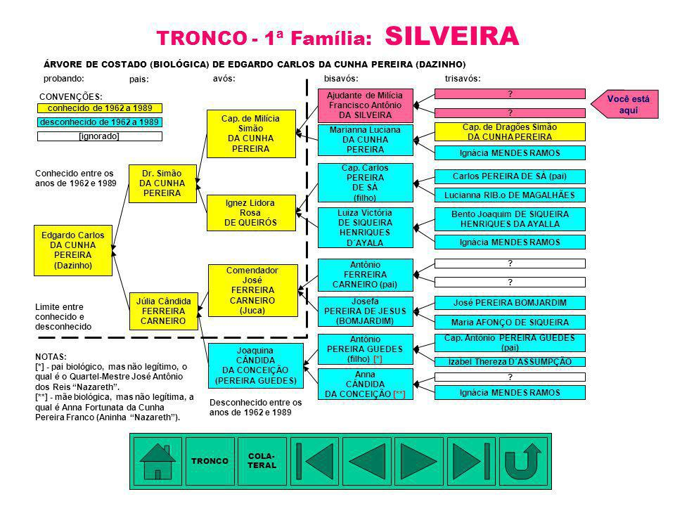 TRONCO - 1ª Família: SILVEIRA
