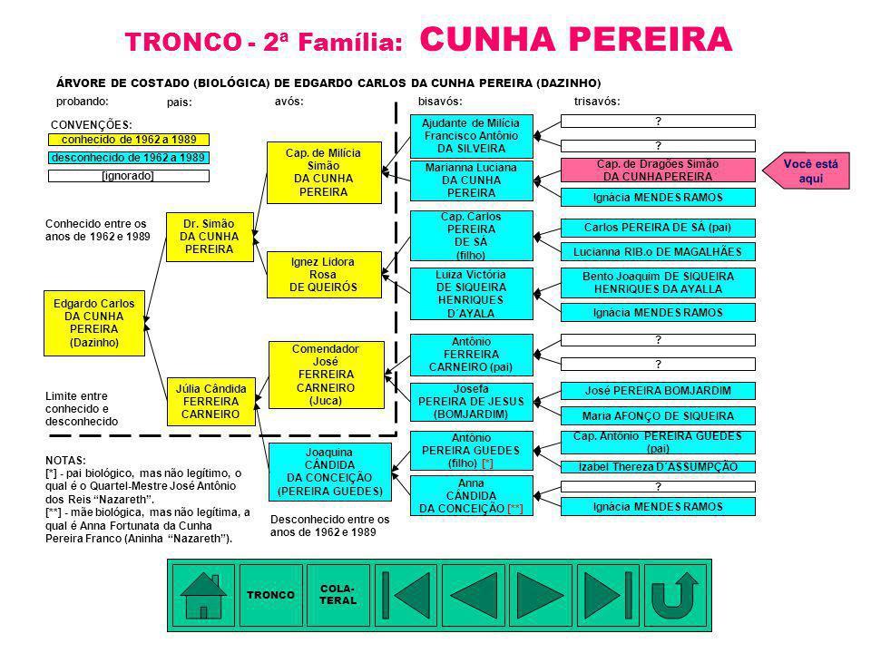 TRONCO - 2ª Família: CUNHA PEREIRA