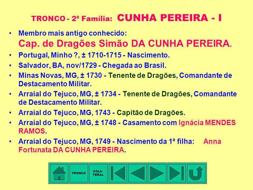 TRONCO - 2ª Família: CUNHA PEREIRA - I
