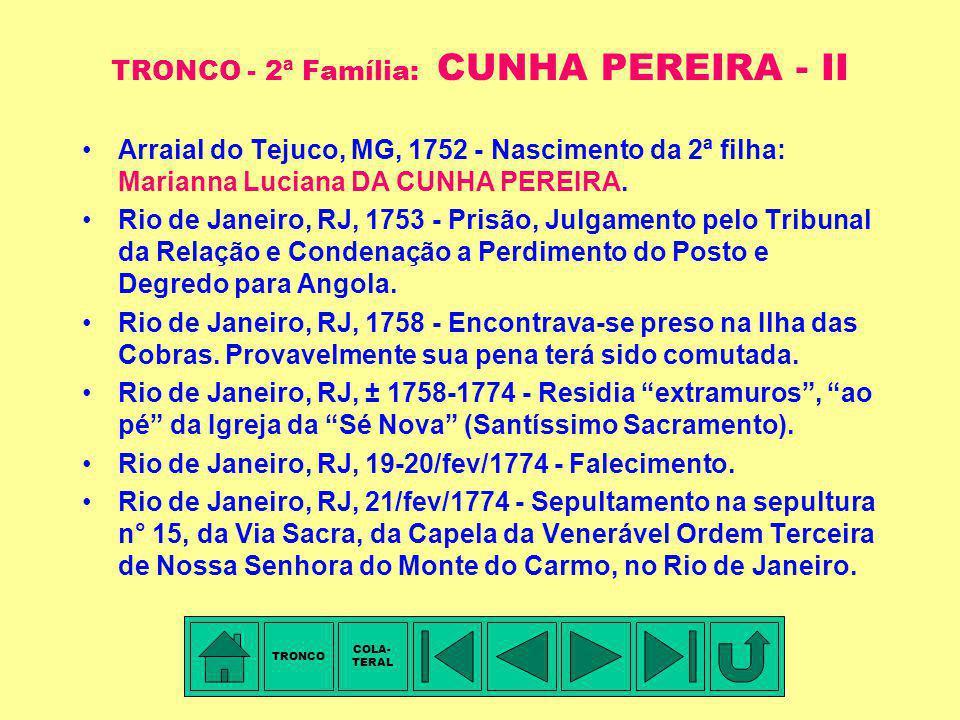 TRONCO - 2ª Família: CUNHA PEREIRA - II