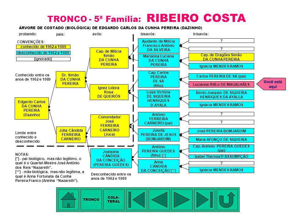 TRONCO - 5ª Família: RIBEIRO COSTA