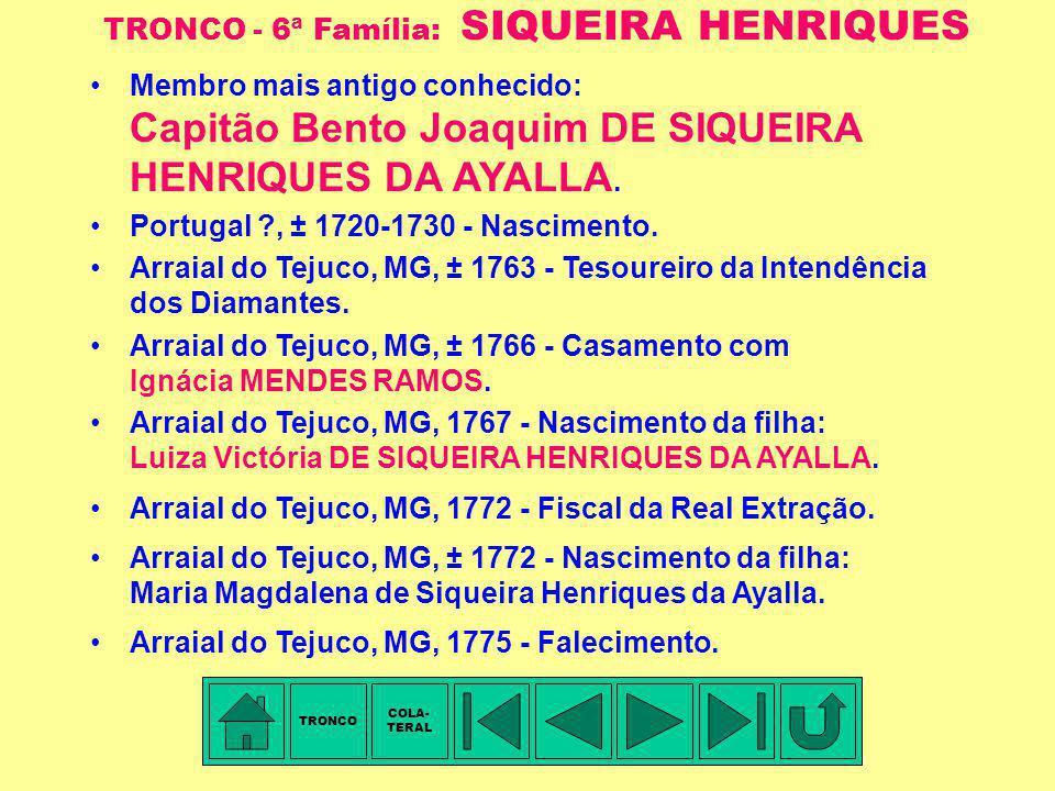 TRONCO - 6ª Família: SIQUEIRA HENRIQUES