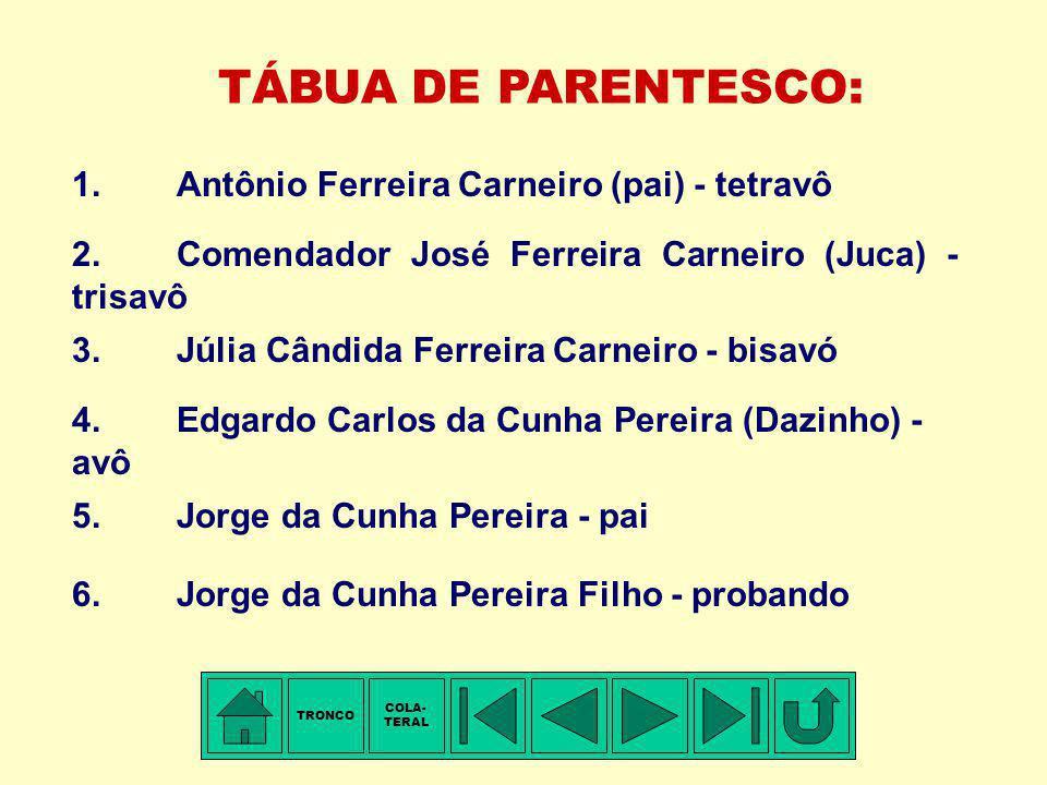 TÁBUA DE PARENTESCO: 1. Antônio Ferreira Carneiro (pai) - tetravô