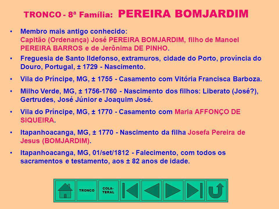 TRONCO - 8ª Família: PEREIRA BOMJARDIM