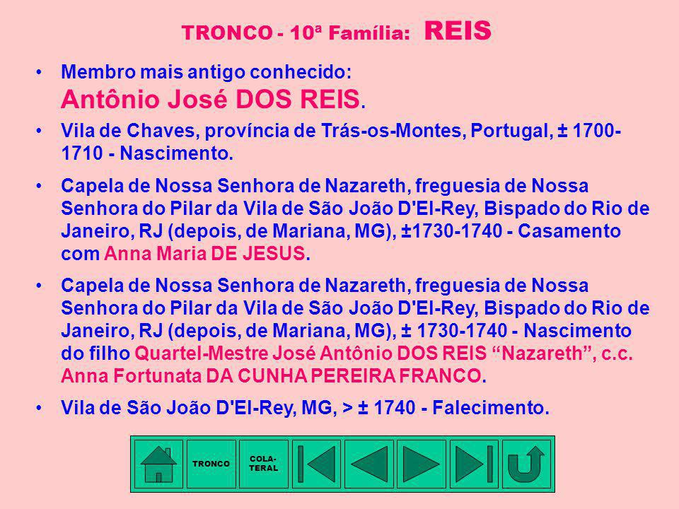 TRONCO - 10ª Família: REIS