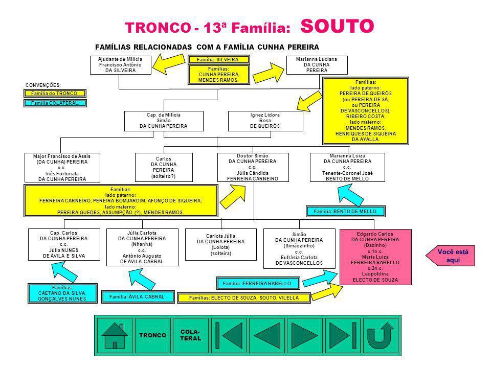 TRONCO - 13ª Família: SOUTO