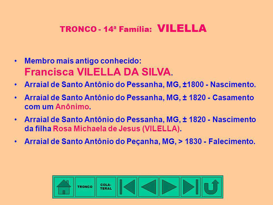 TRONCO - 14ª Família: VILELLA
