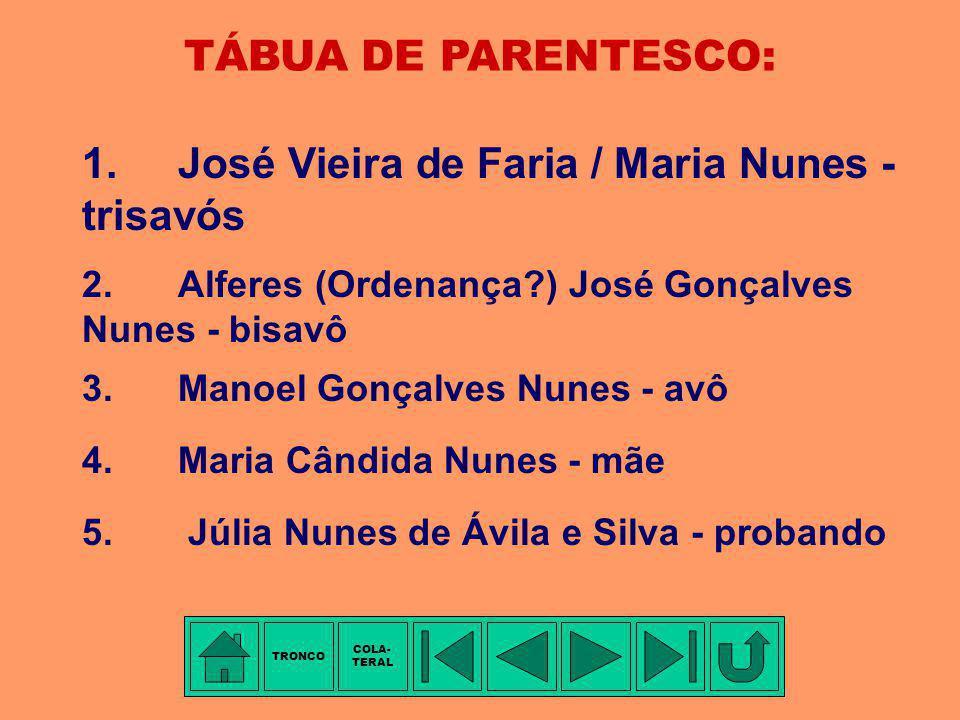 1. José Vieira de Faria / Maria Nunes - trisavós