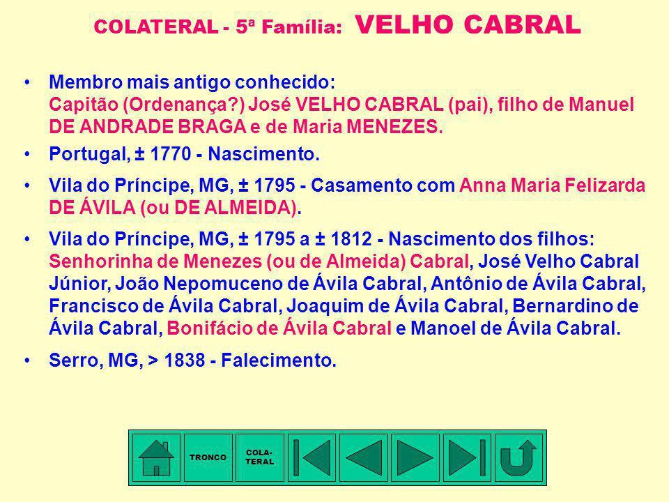 COLATERAL - 5ª Família: VELHO CABRAL