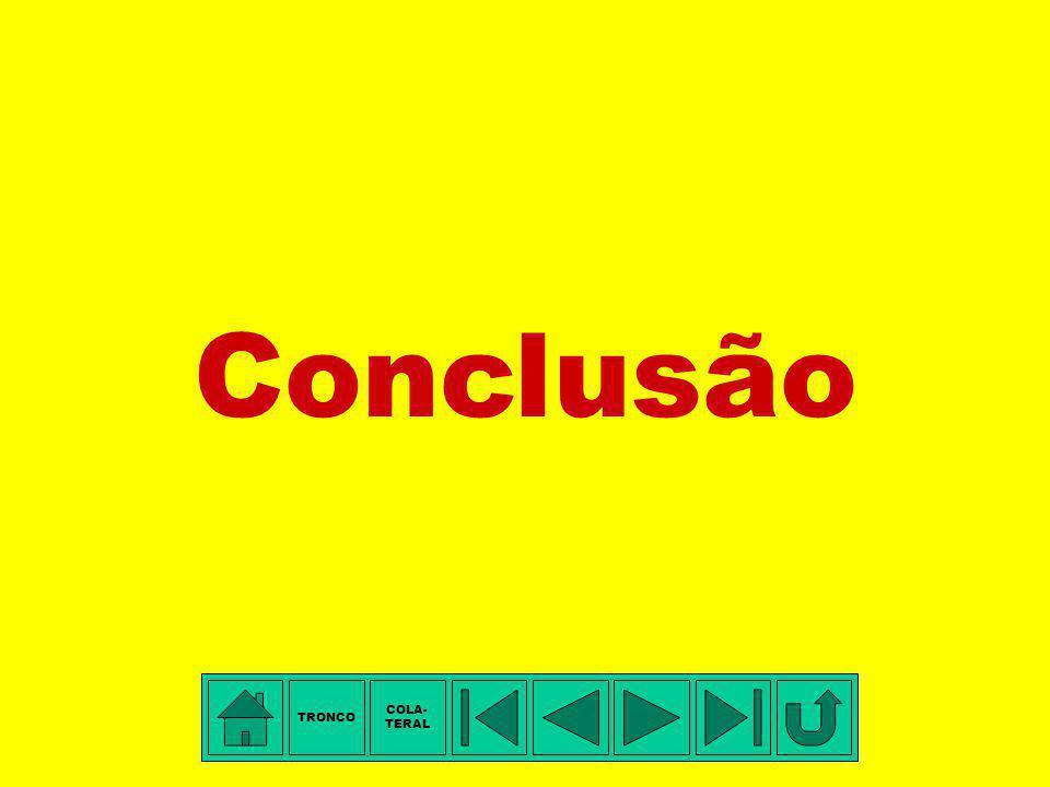 Conclusão TRONCO COLA- TERAL