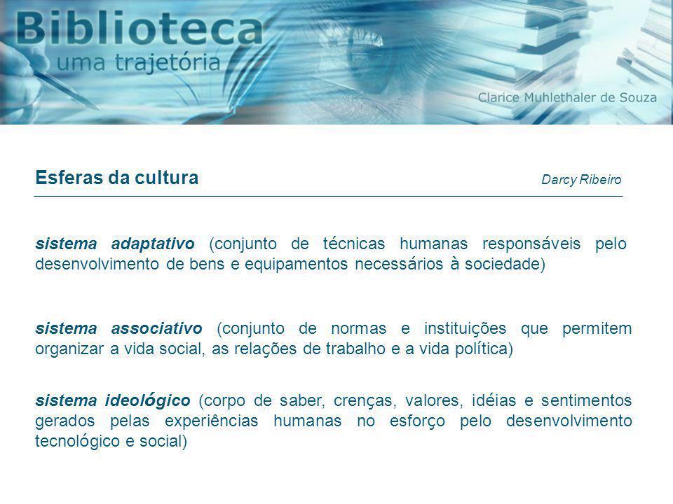 Esferas da cultura Darcy Ribeiro.