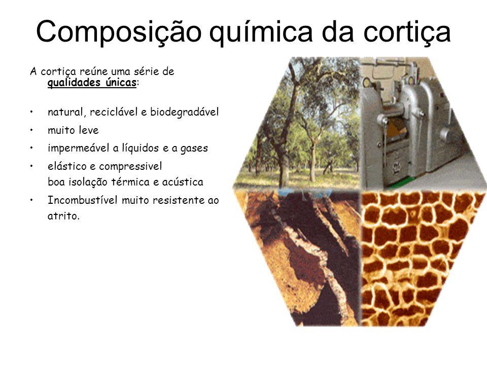 Composição química da cortiça