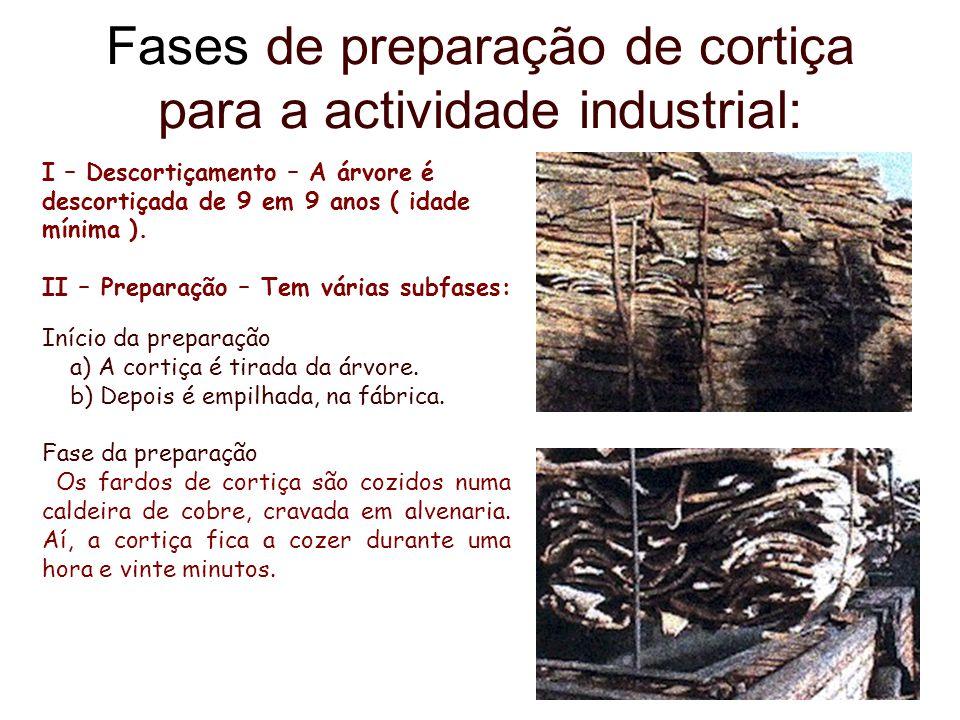 Fases de preparação de cortiça para a actividade industrial: