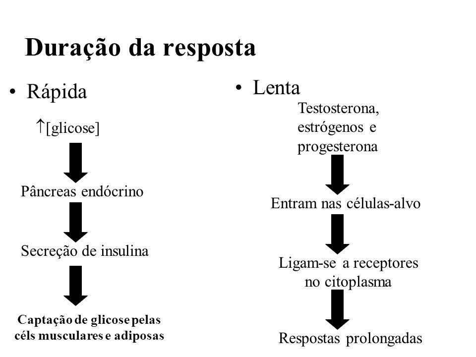 Captação de glicose pelas céls musculares e adiposas
