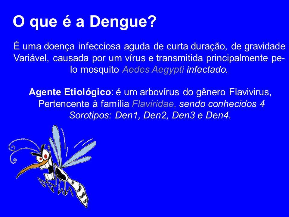 O que é a Dengue É uma doença infecciosa aguda de curta duração, de gravidade. Variável, causada por um vírus e transmitida principalmente pe-