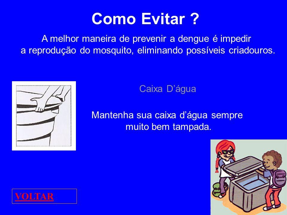 Como Evitar A melhor maneira de prevenir a dengue é impedir