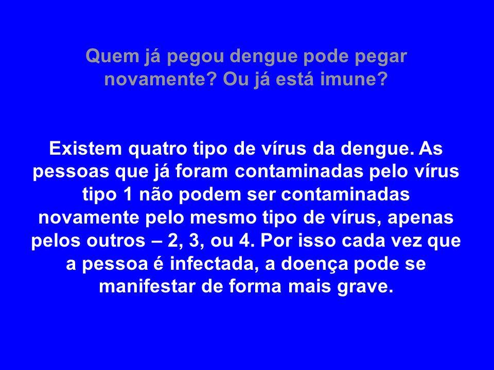 Quem já pegou dengue pode pegar novamente Ou já está imune