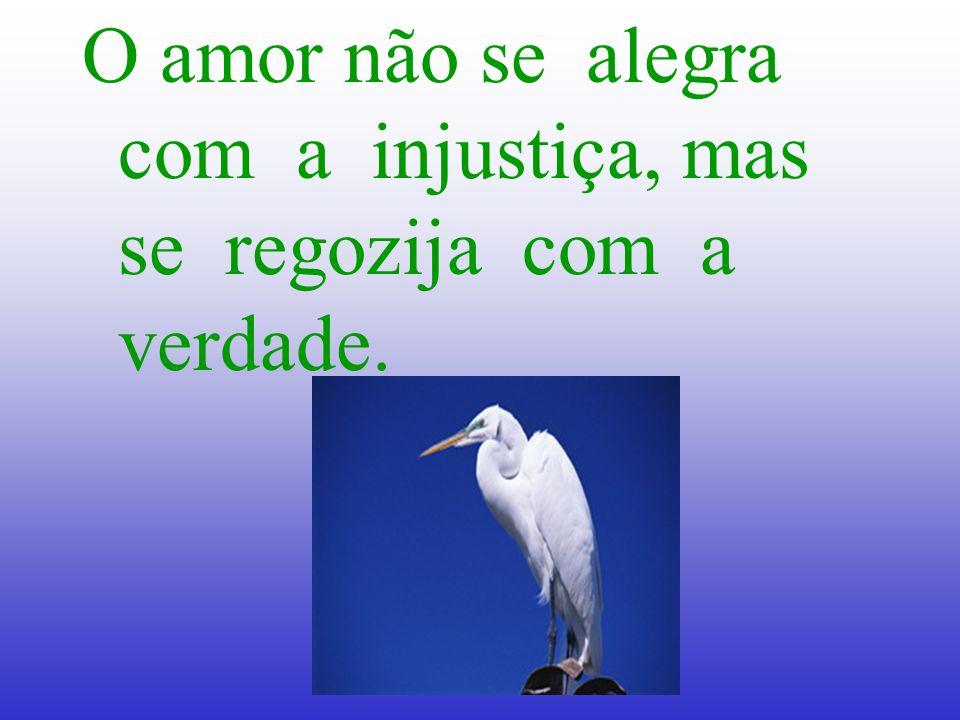 O amor não se alegra com a injustiça, mas se regozija com a verdade.
