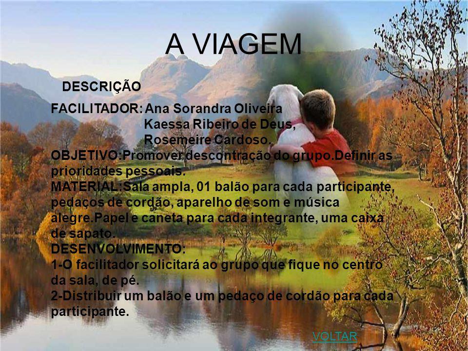 A VIAGEM DESCRIÇÃO FACILITADOR: Ana Sorandra Oliveira