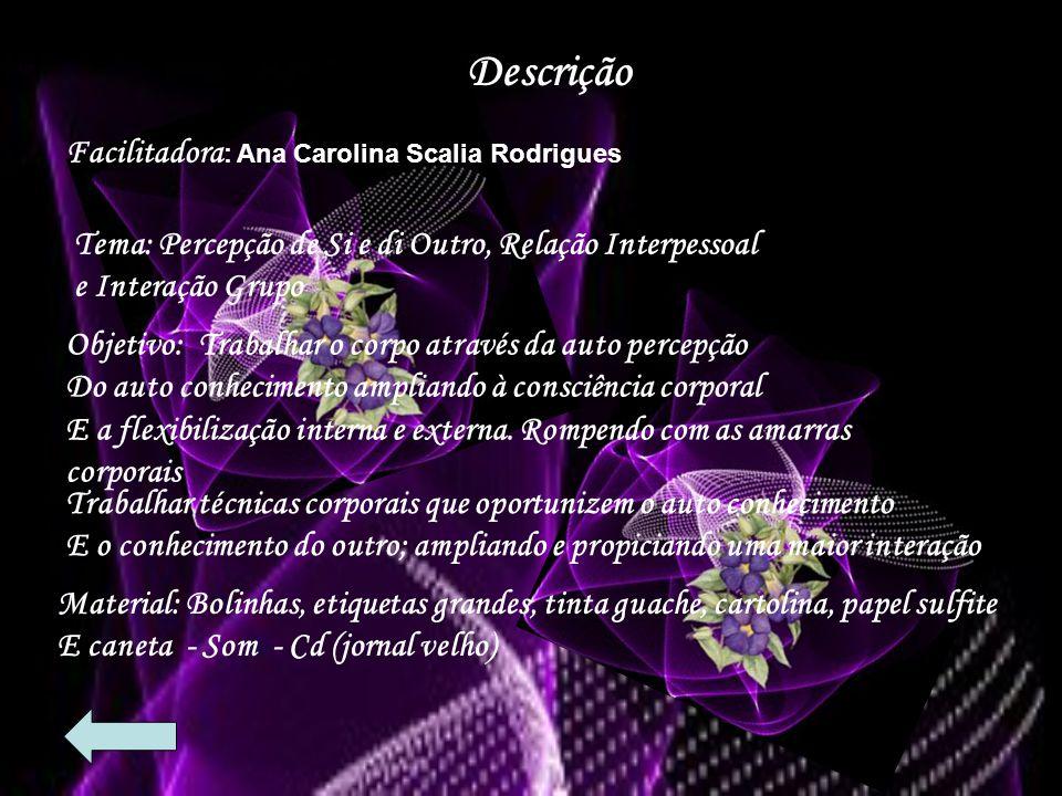 Descrição Facilitadora: Ana Carolina Scalia Rodrigues