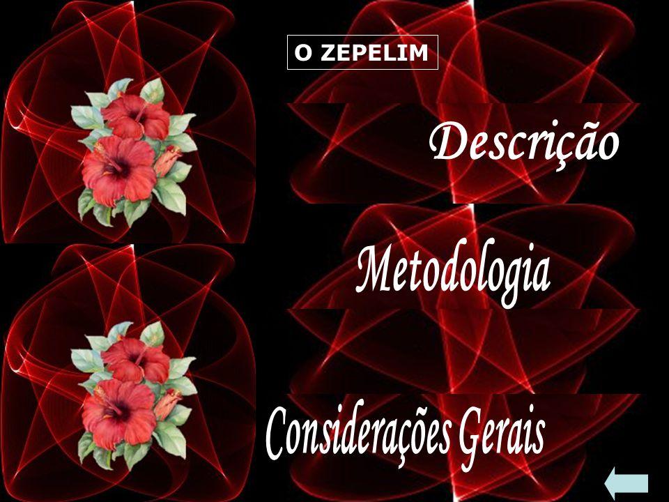 Descrição Metodologia Considerações Gerais