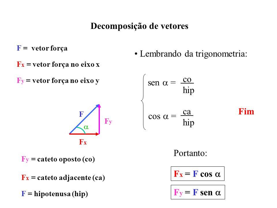 Decomposição de vetores