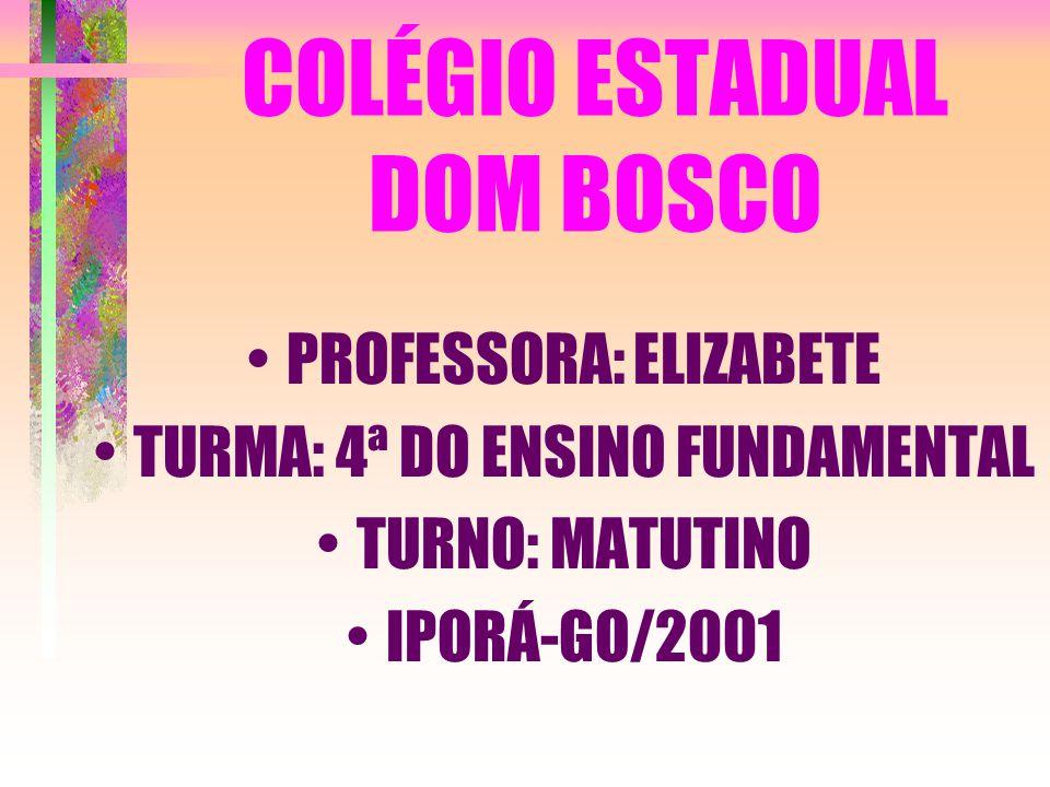 COLÉGIO ESTADUAL DOM BOSCO