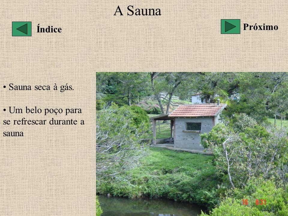 A Sauna Próximo Índice Sauna seca à gás.