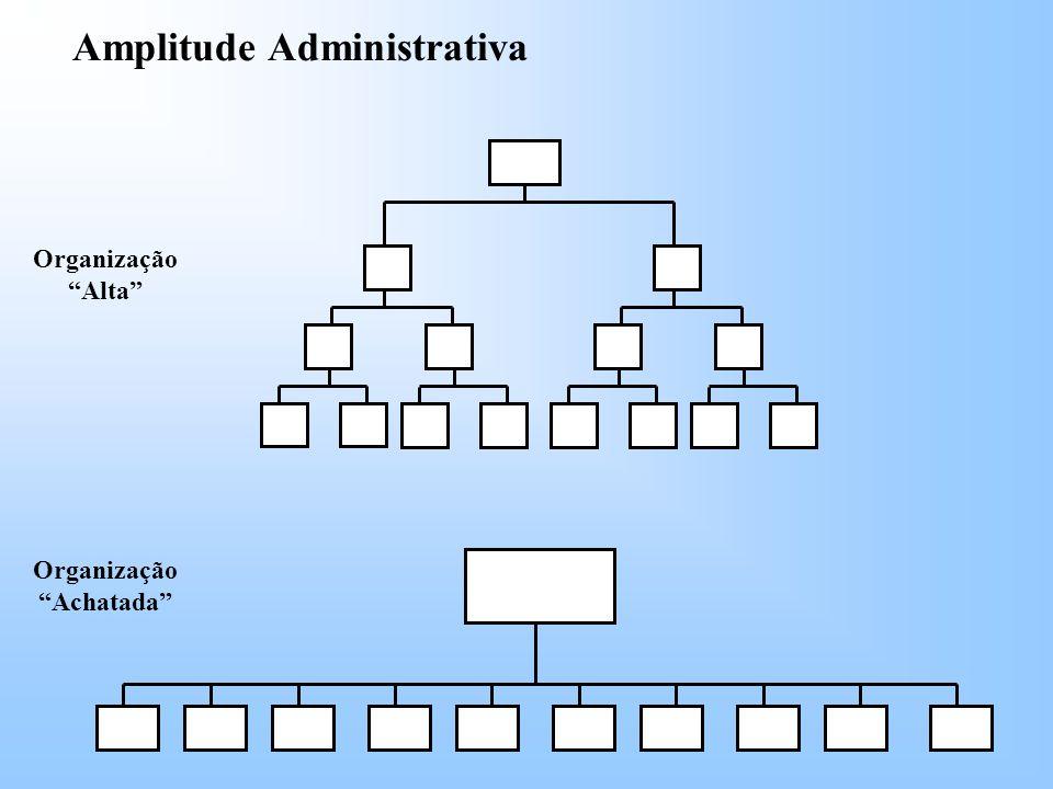 Organização Achatada