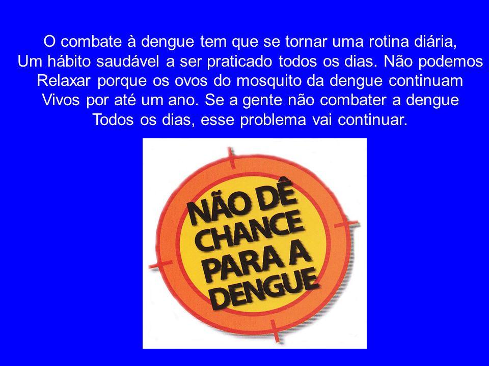 O combate à dengue tem que se tornar uma rotina diária,