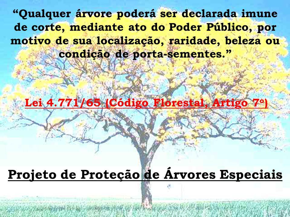 Lei 4.771/65 (Código Florestal, Artigo 7o)