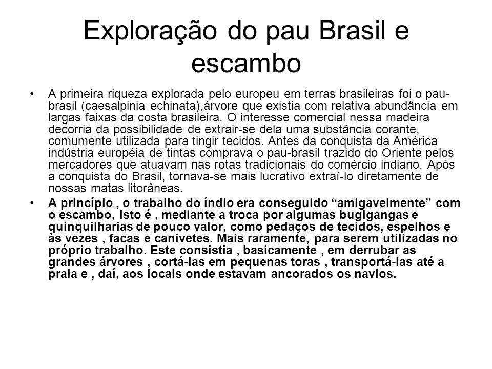 Exploração do pau Brasil e escambo