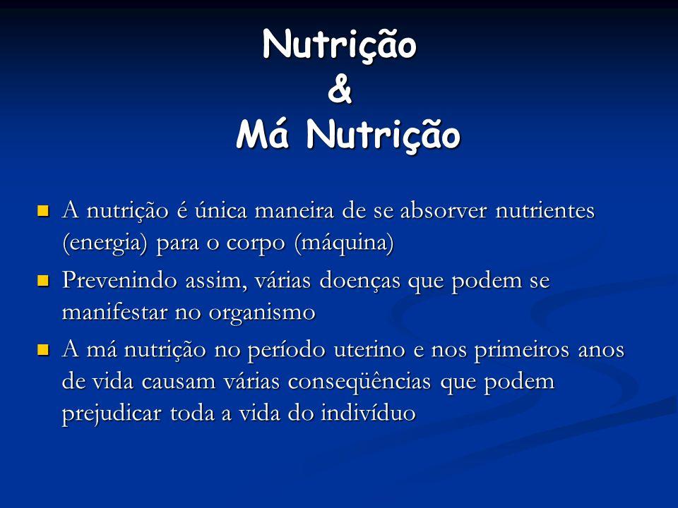 Nutrição & Má Nutrição A nutrição é única maneira de se absorver nutrientes (energia) para o corpo (máquina)