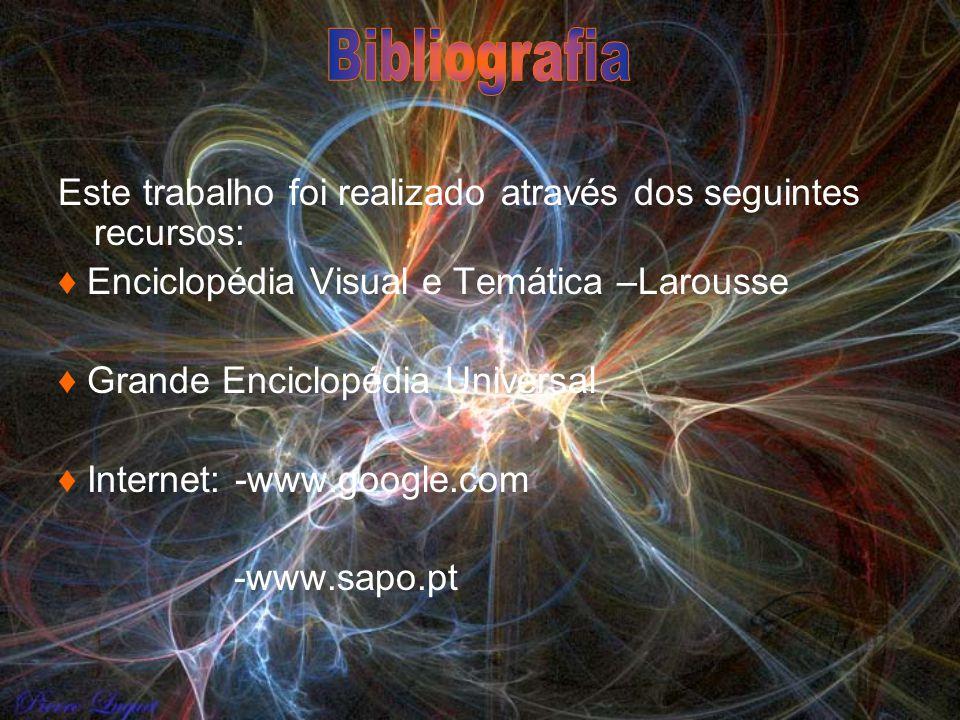 Bibliografia Este trabalho foi realizado através dos seguintes recursos: ♦ Enciclopédia Visual e Temática –Larousse.