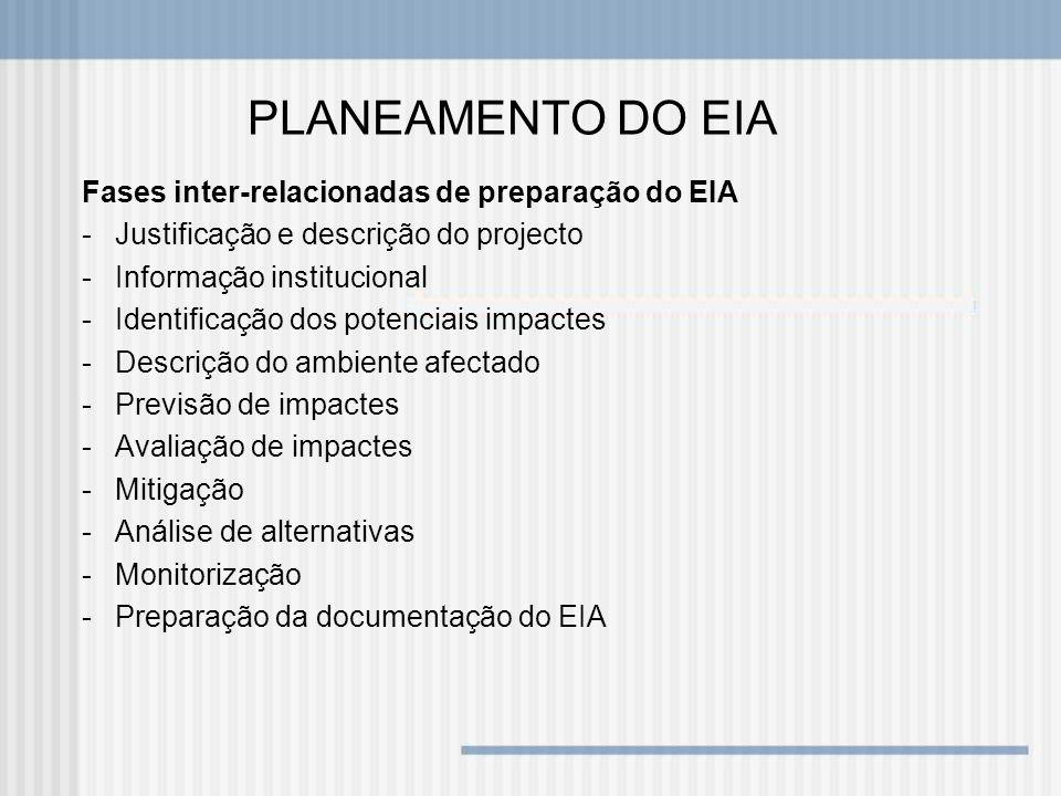 PLANEAMENTO DO EIA Fases inter-relacionadas de preparação do EIA