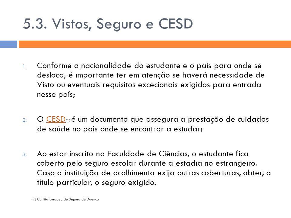 5.3. Vistos, Seguro e CESD