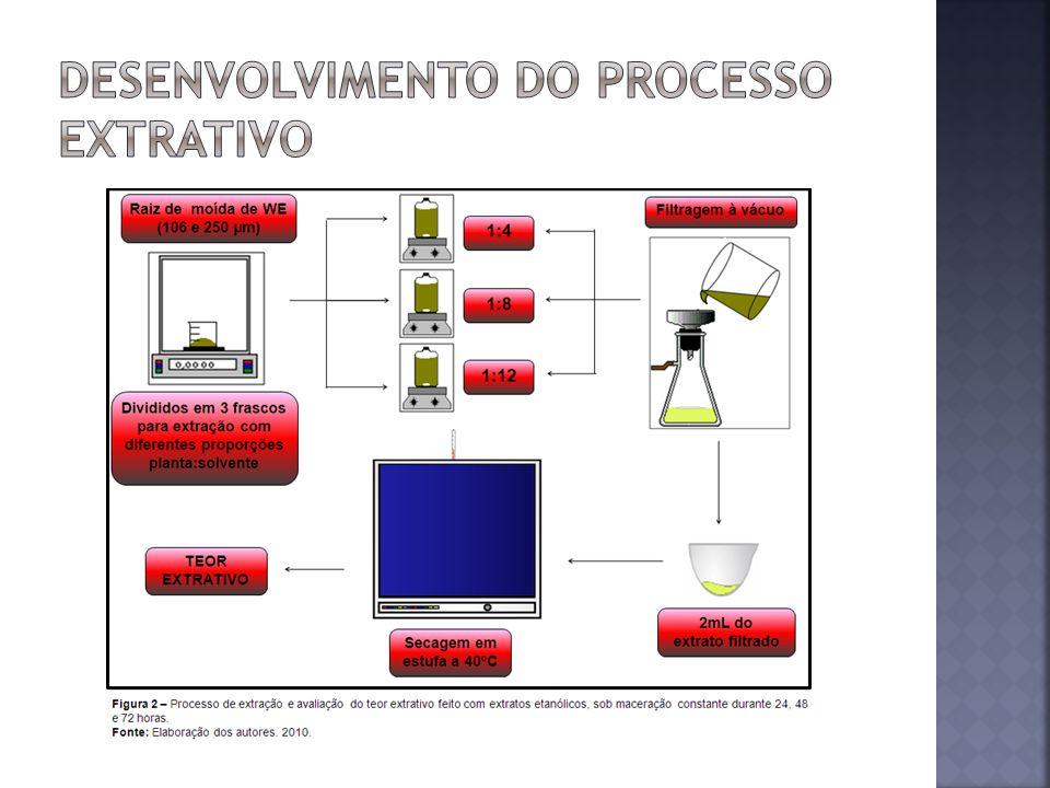 Desenvolvimento do processo extrativo