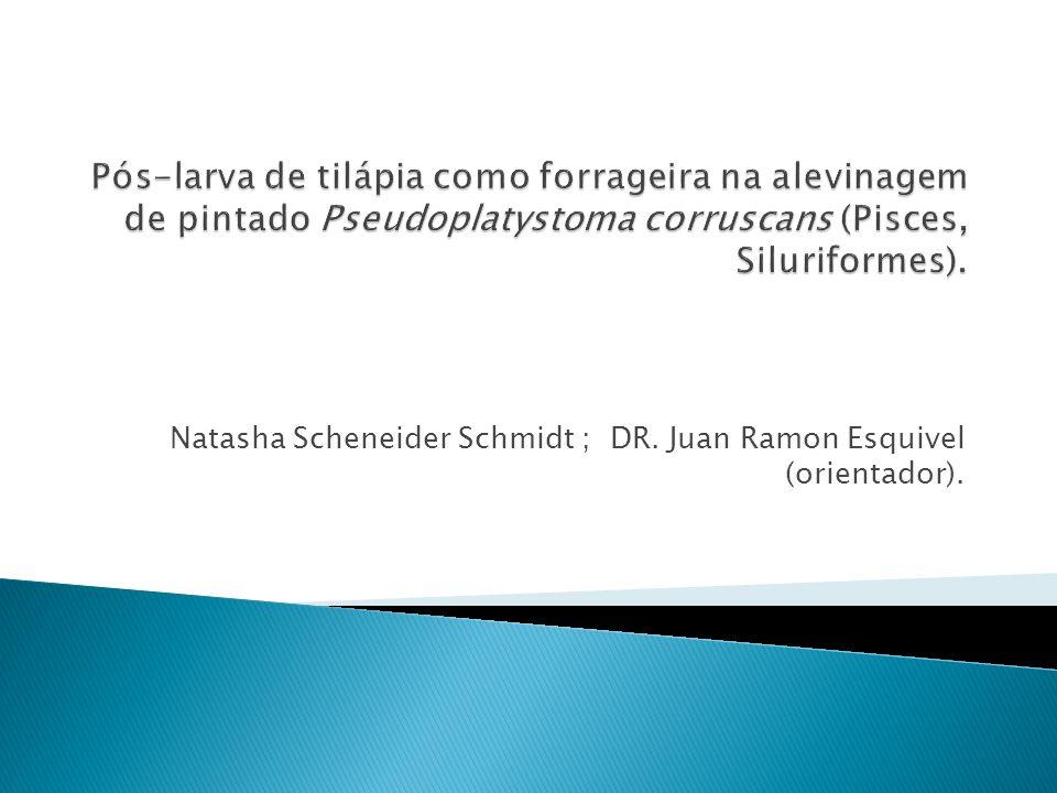 Natasha Scheneider Schmidt ; DR. Juan Ramon Esquivel (orientador).