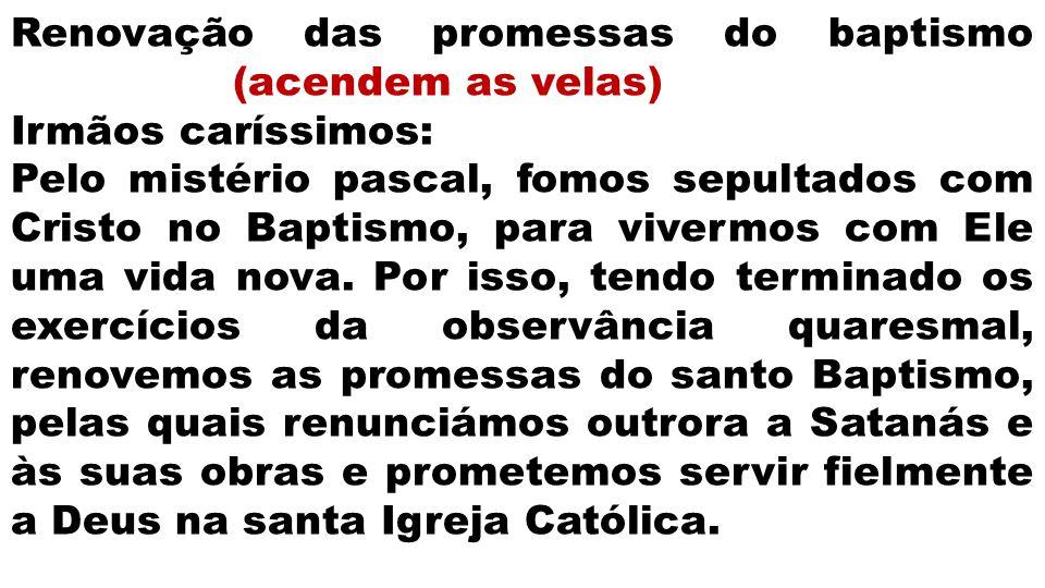 Renovação das promessas do baptismo (acendem as velas)