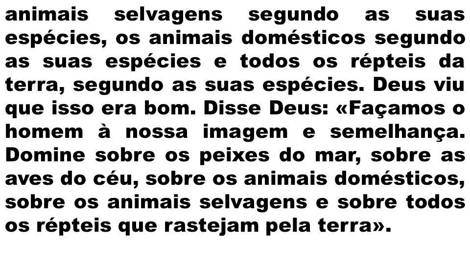 animais selvagens segundo as suas espécies, os animais domésticos segundo as suas espécies e todos os répteis da terra, segundo as suas espécies.