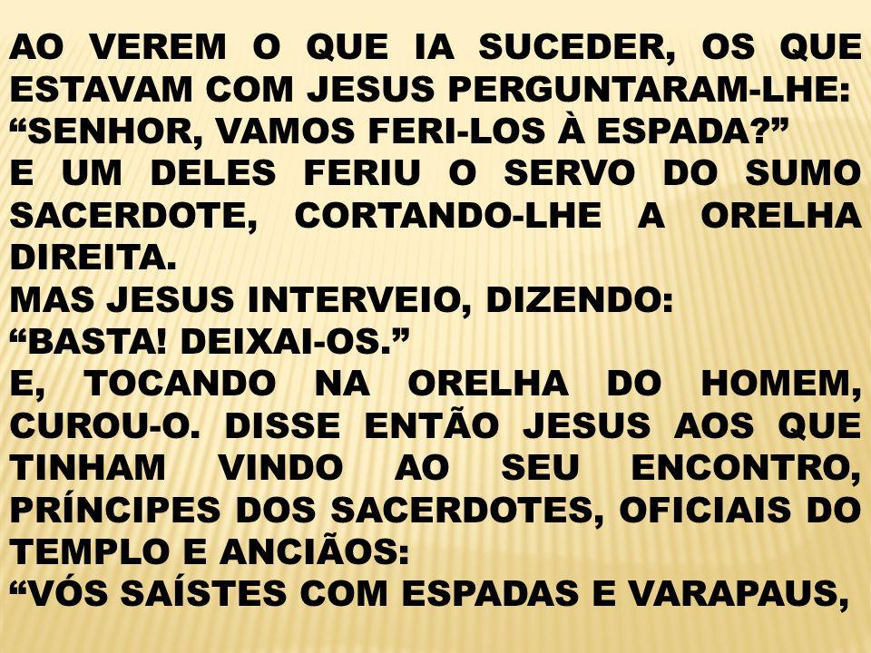 AO VEREM O QUE IA SUCEDER, OS QUE ESTAVAM COM JESUS PERGUNTARAM-LHE: