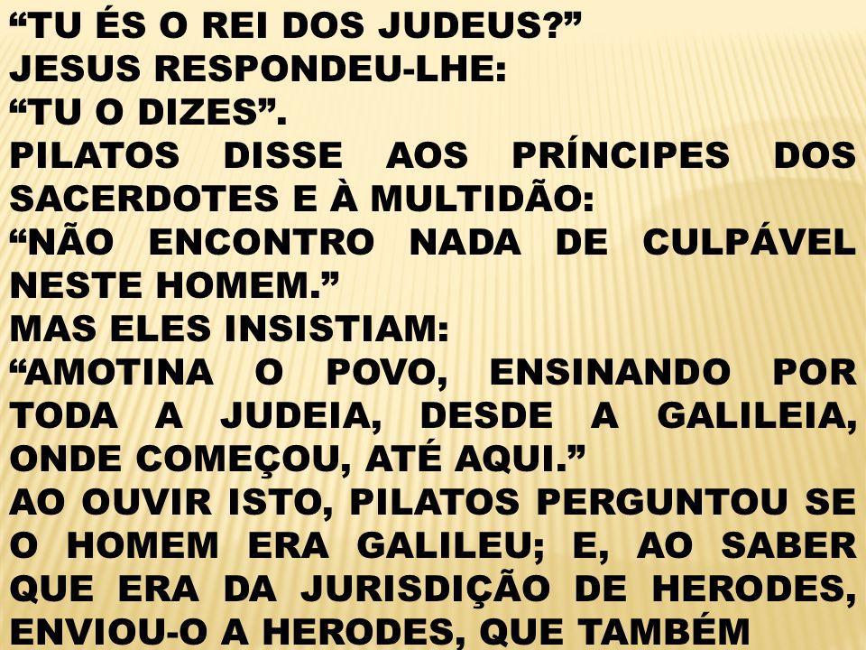 TU ÉS O REI DOS JUDEUS JESUS RESPONDEU-LHE: TU O DIZES . PILATOS DISSE AOS PRÍNCIPES DOS SACERDOTES E À MULTIDÃO: