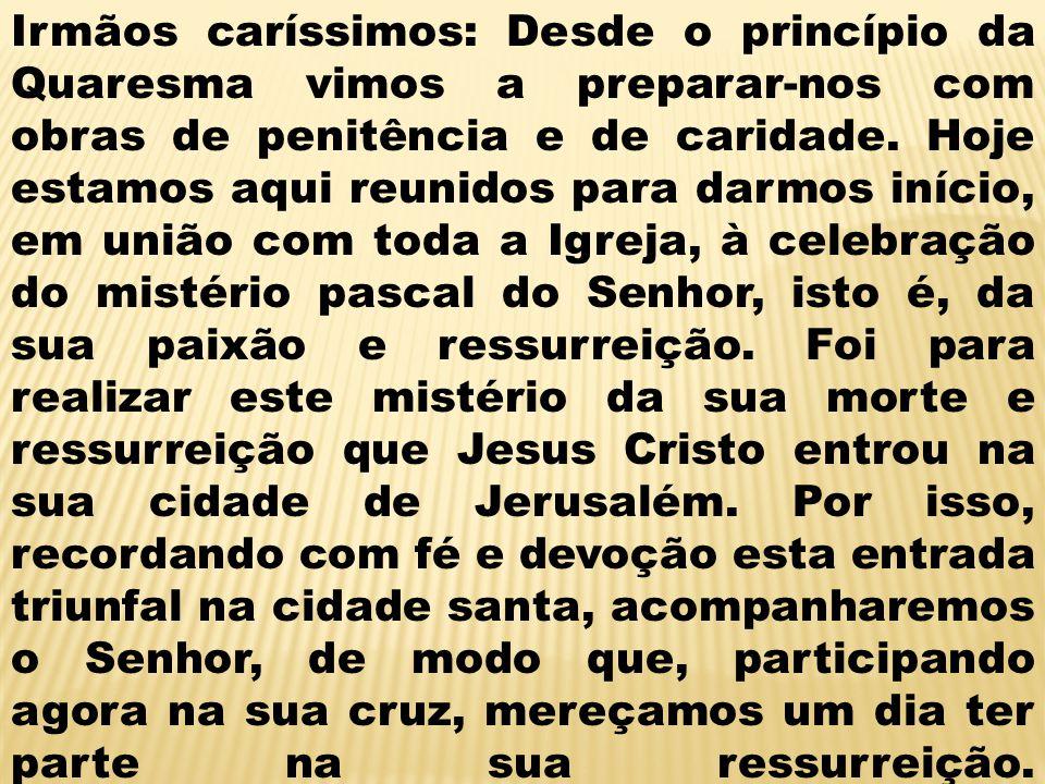 Irmãos caríssimos: Desde o princípio da Quaresma vimos a preparar-nos com obras de penitência e de caridade.