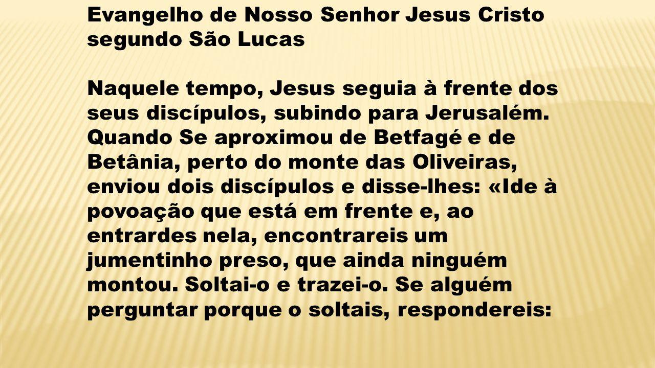 Evangelho de Nosso Senhor Jesus Cristo segundo São Lucas Naquele tempo, Jesus seguia à frente dos seus discípulos, subindo para Jerusalém.