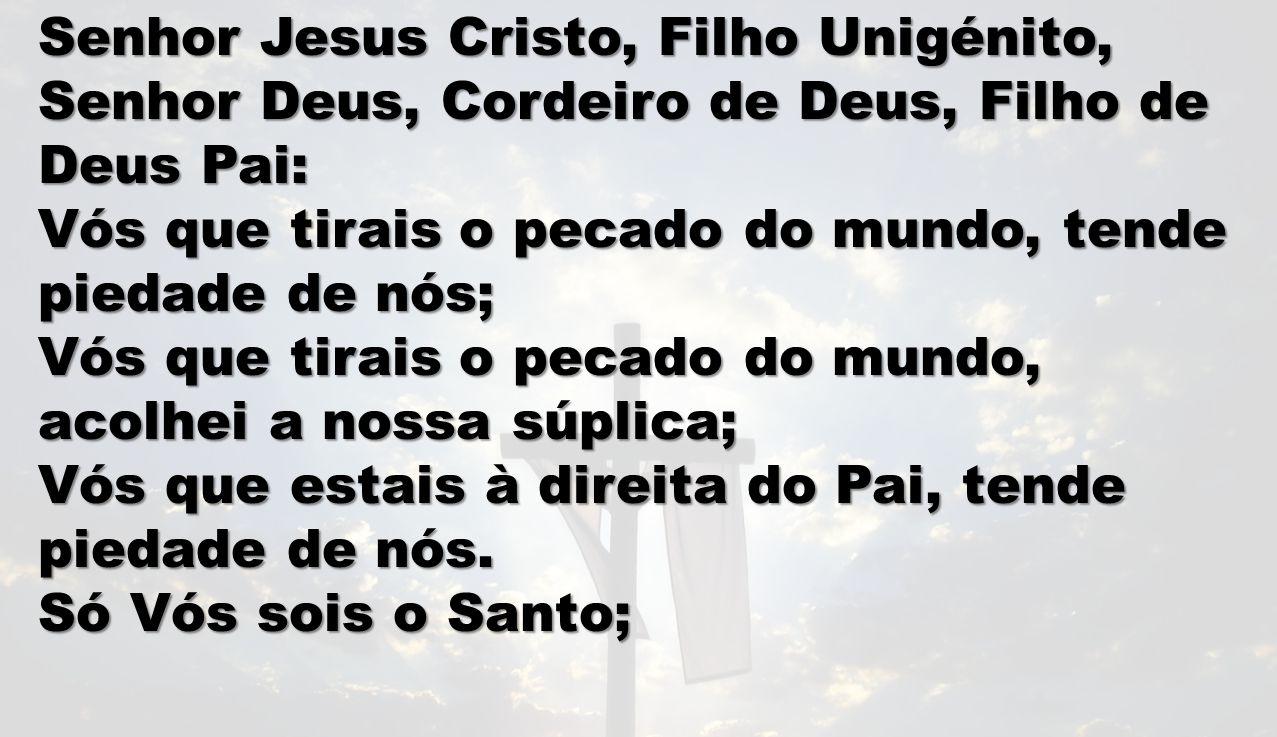 Senhor Jesus Cristo, Filho Unigénito,