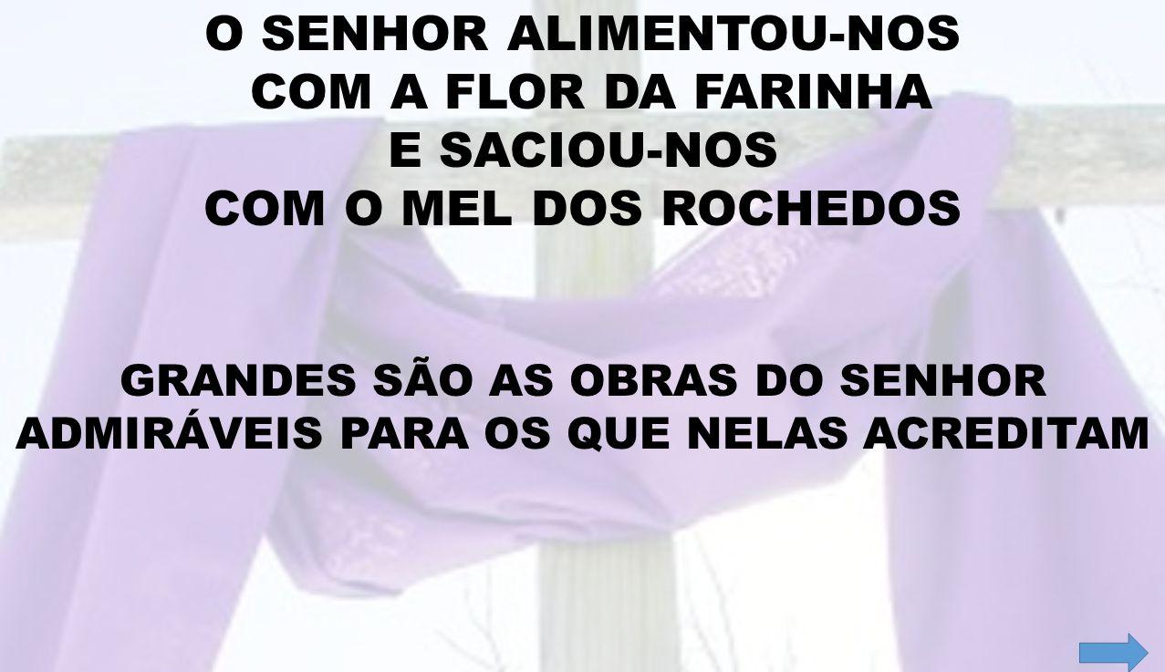 O SENHOR ALIMENTOU-NOS COM A FLOR DA FARINHA E SACIOU-NOS