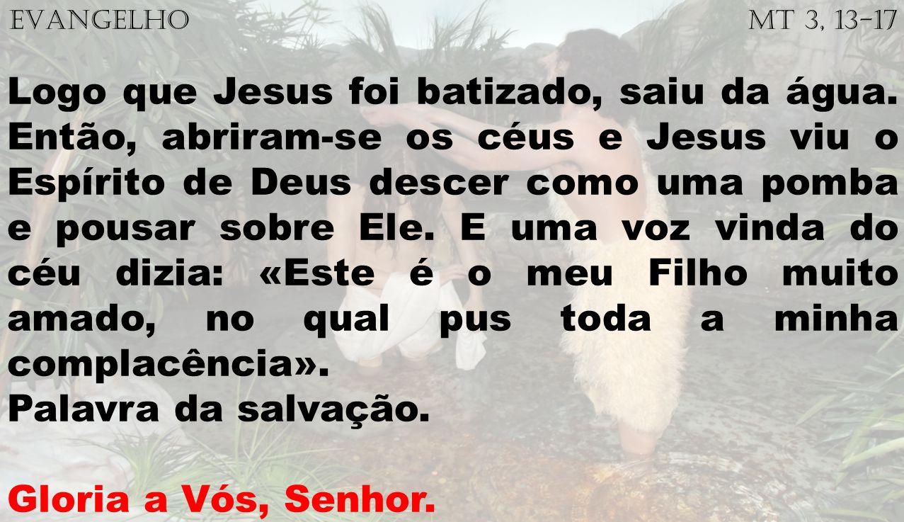 EVANGELHO Mt 3, 13-17