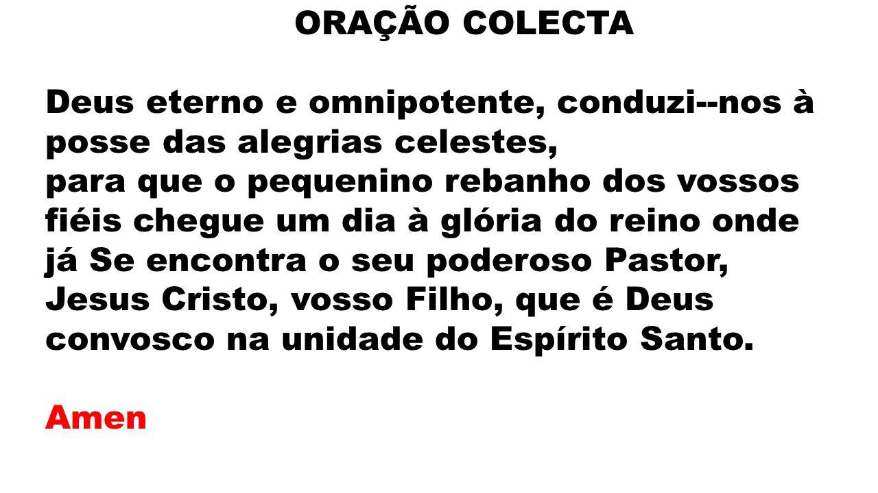 ORAÇÃO COLECTA