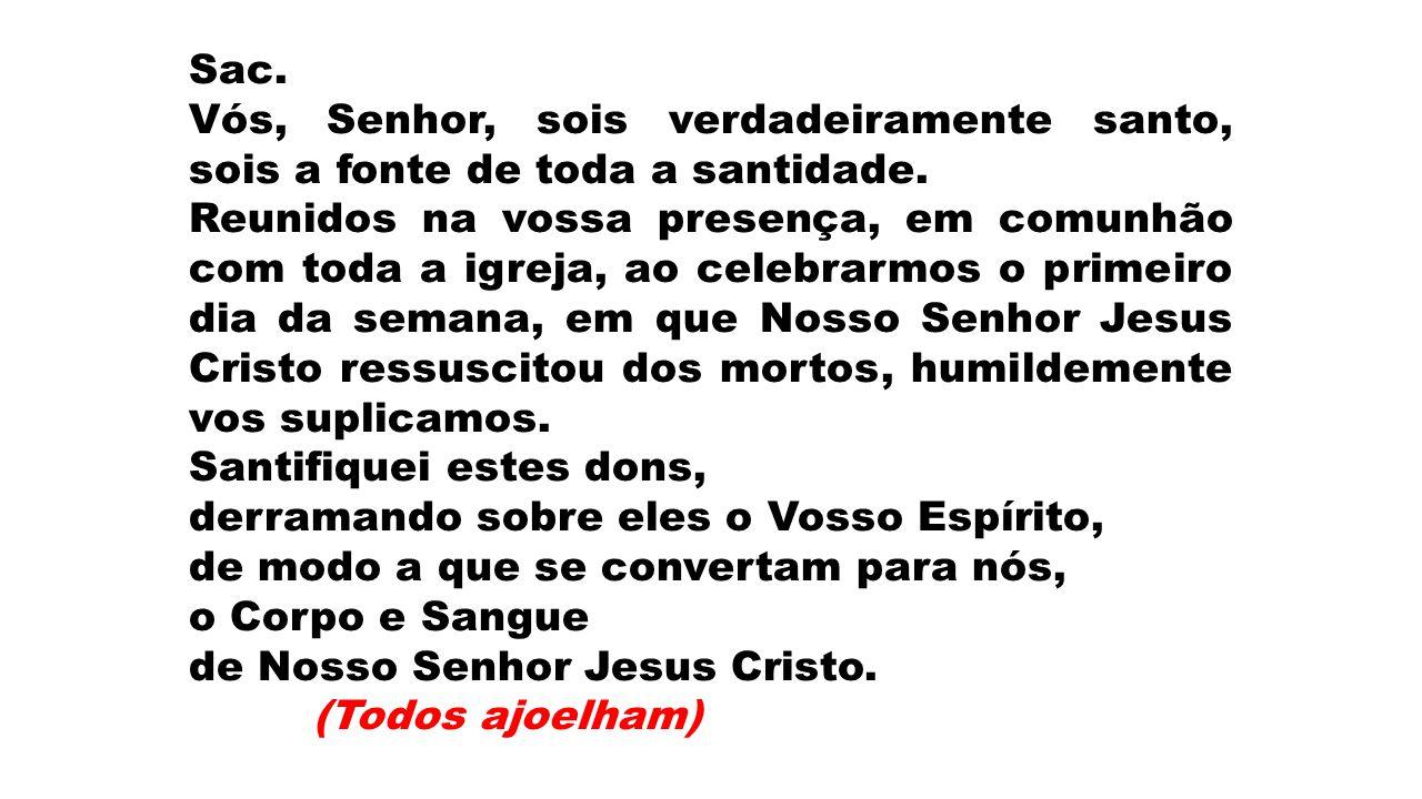 Sac. Vós, Senhor, sois verdadeiramente santo, sois a fonte de toda a santidade.